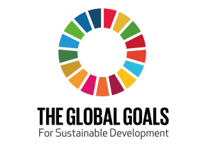 The Global Goals Sustainable Development Goals Logo